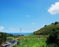 葵扇湖觀光農場